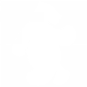 nifty-bear-web-design-white-icon-large