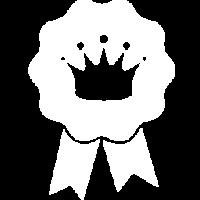 nifty-bear-web-design-content-blogs