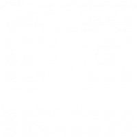 nifty-bear-web-design-seo